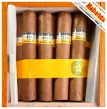 Кубинские сигары Cohiba Robustos